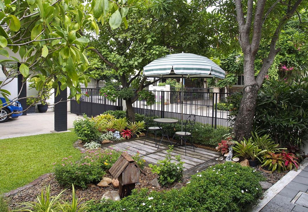 Trang trí sân vườn bằng cây xanh