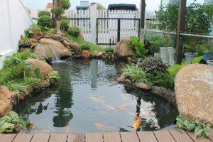 Trang trí sân vườn tiểu cảnh hồ cá phong thủy