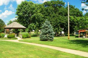 Các loại cây phổ biến thường được lựa chọn trồng cây công trình