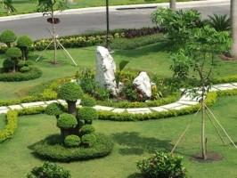 Bí Quyết Chọn Đơn Vị Thi Công Sân Vườn và Trồng Cây Xanh Uy Tín Nhất