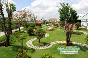 Trồng cây xanh công trình với những lợi ích thiết thực