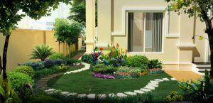 Một vài mẹo thiết kế cây xanh cho sân vườn diện tích nhỏ