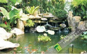 Hướng dẫn thiết kế cảnh quan sân vườn hợp phong thủy