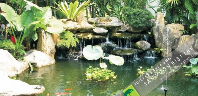 kết hợp đá trang trí cùng cây xanh tiểu cảnh giúp đa dạng hệ sinh thái của khu vườn