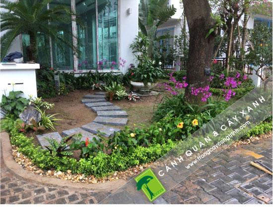 thiết kế sân vườn biệt thự hợp phong thủy