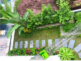 Trồng cây xanh và thi công cảnh quan sân vườn tại Khu Biệt thự ECOPARK RIVE