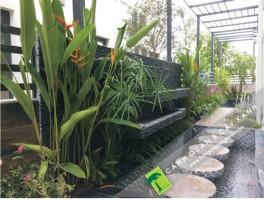 Trồng cây xanh và thi công Cảnh Quan sân vườn tại Khu Biệt thự Nam An Khánh