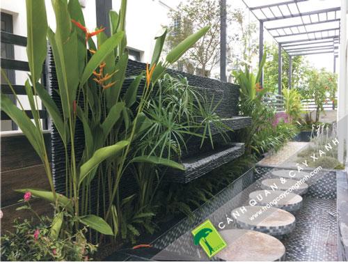trồng cây xanh ngoại thất hợp phong thủy