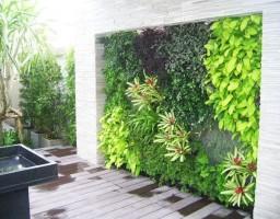 Xu hướng cảnh quan cây xanh vườn tường thẳng đứng