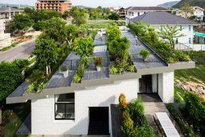 Quá trình thi công cây xanh sân vườn trên sân thượng