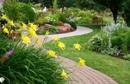 sân vườn trồng nhiều hoa