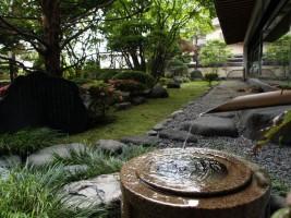 Trồng cây bóng mát ở sân vườn biệt thự mang với nhiều lợi ích bất ngờ