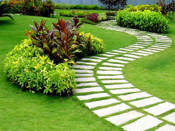 Lối đi trong sân vườn
