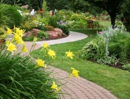 Đơn vị thiết kế & thi công sân vườn chuyên nghiệp